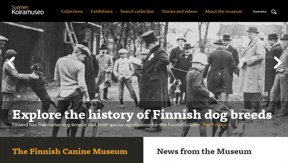 history of Finnish dog breeds.png
