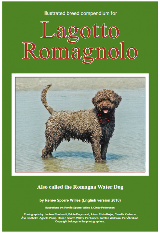 lagotto illustratedstandard.png