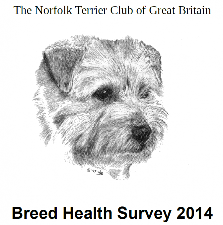 norfolkhealthreport-gb.png
