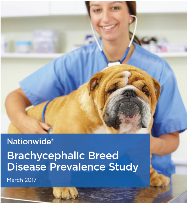 nationwide-brachy study march 2017.png