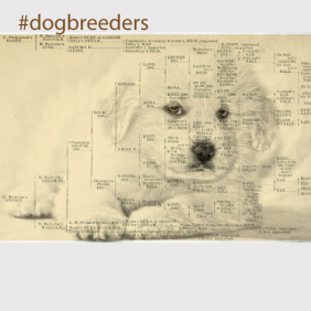 Topics for Breeders