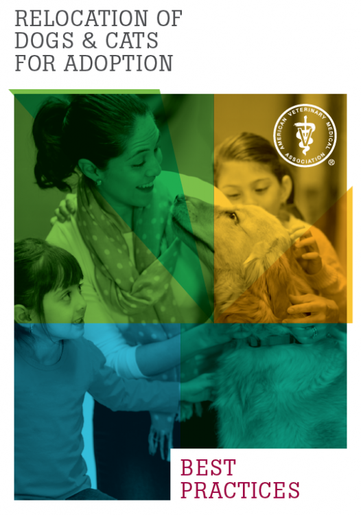 avmatransportadoptionbrochure.thumb.png