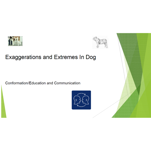 Exagerations-and-Extremes---A.Hedhammer.png