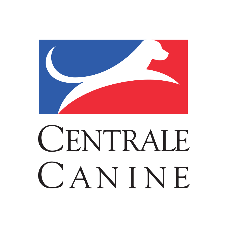 1450553451.1450379670.The_French_Kennel_
