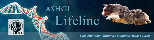 Masthead-ASHGI-Lifeline-web.jpg.1036c6b0