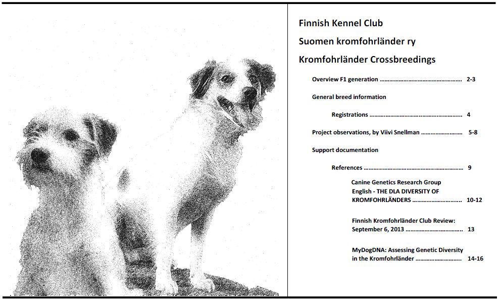 kromieX.png.2f8371160b11c178c664506c944c