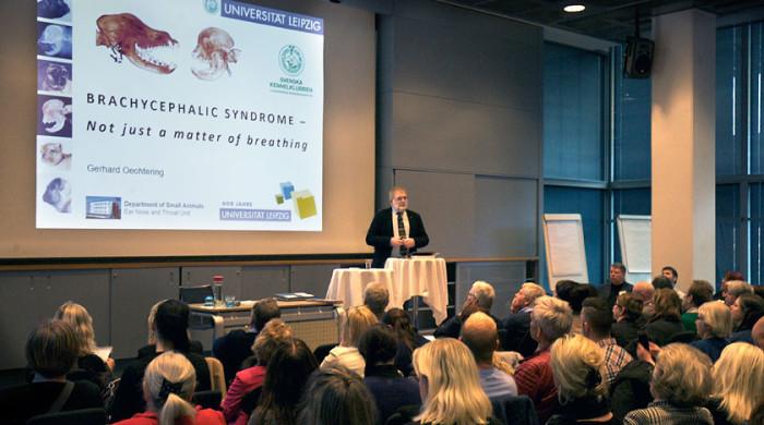 skkbrachyconferencefeb2016.png