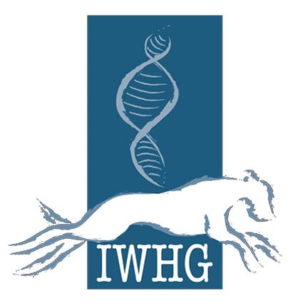 irishwolfhoundhealthgrouplogo2.png