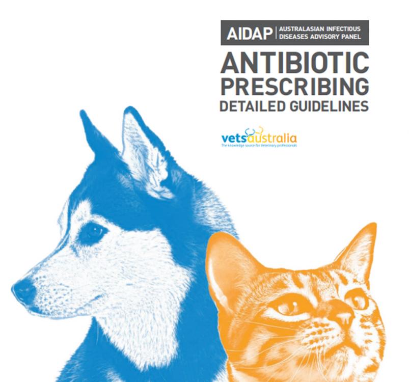AIDAP Antibiotic prescribing guidelines Australia.png