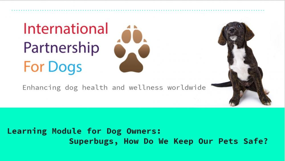 Learning Module for Dog Owners