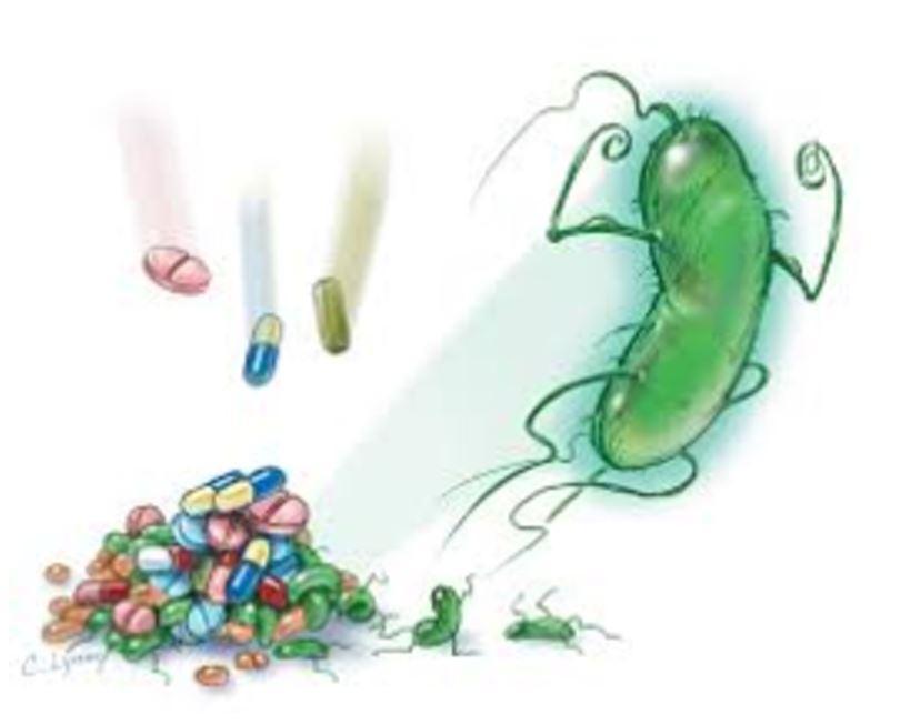 superbug.JPG