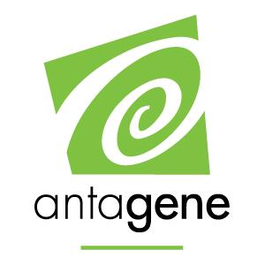 antegene-logo-hgtd.png