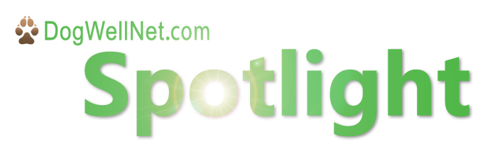 spotlight logo-01.jpg