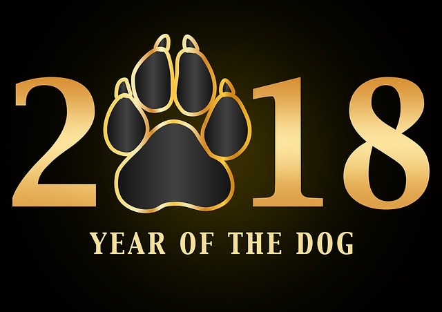 year of the dog.jpg