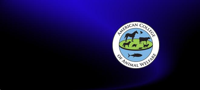 Veterinary Welfare Education in the United States