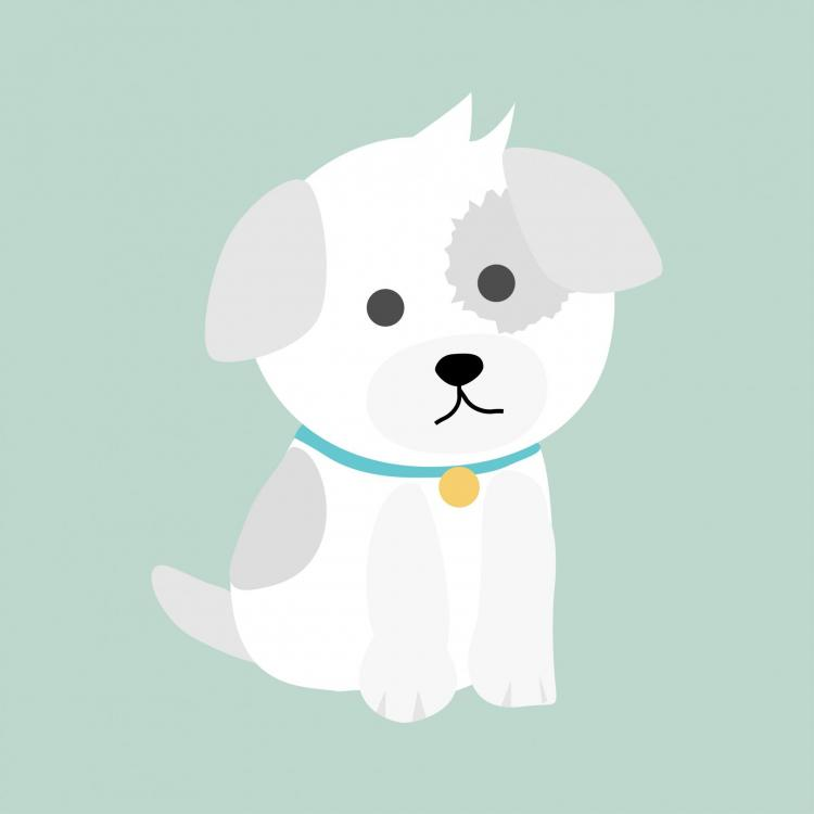 dog-puppy-illustration.jpg