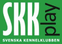 skkplay.png