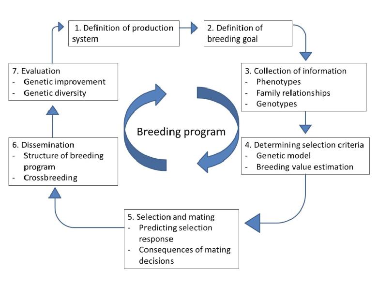 breeding programs outtake.png