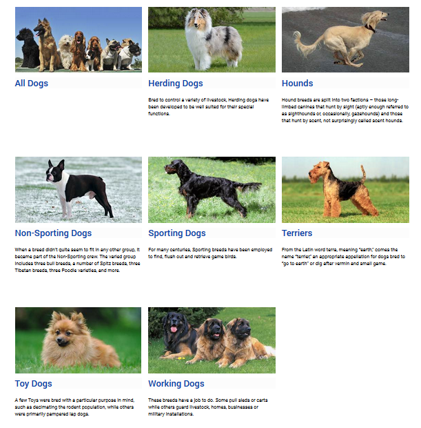 CKC Breed Search.png
