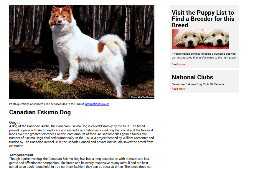 CKC Breed Search Results.png