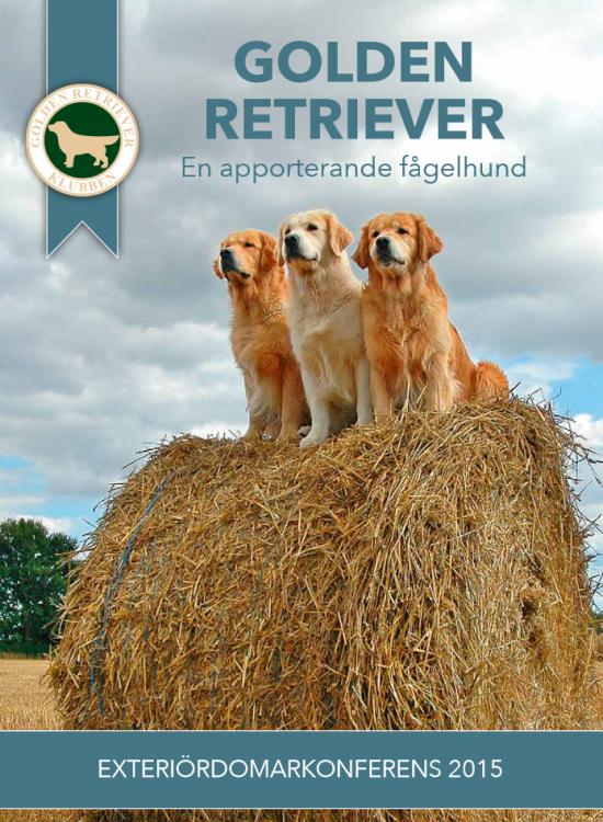 golden retriever exterior - 2015 booklet.png