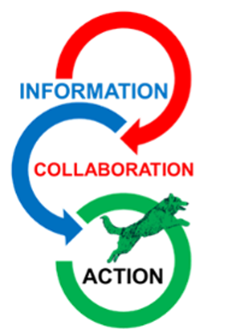 information collaboration action graphic.png