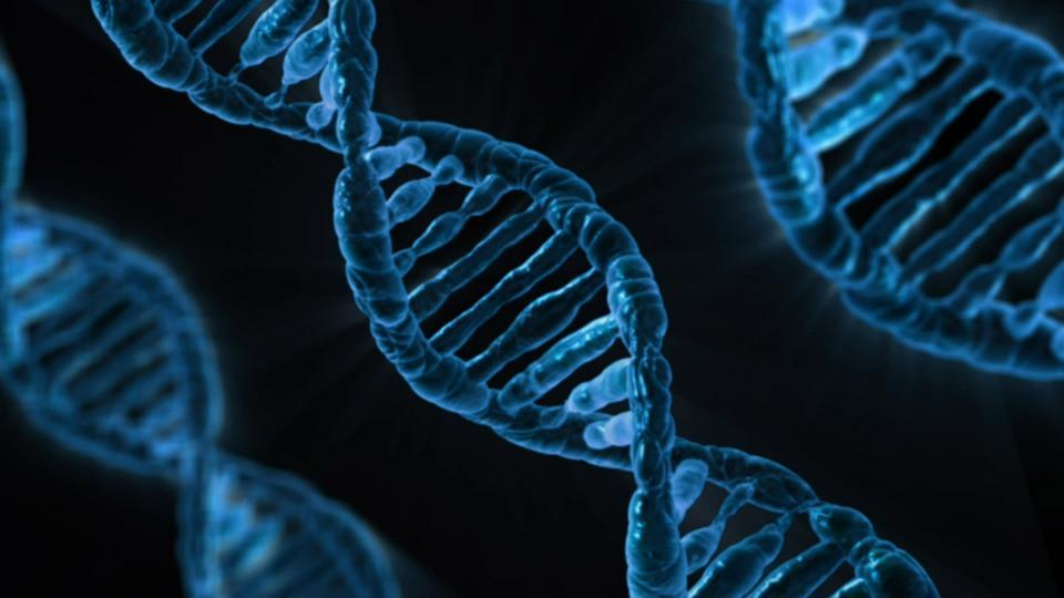 Is COVID-time the Right Time to Kon Mari Your Genetic Testing Plans?