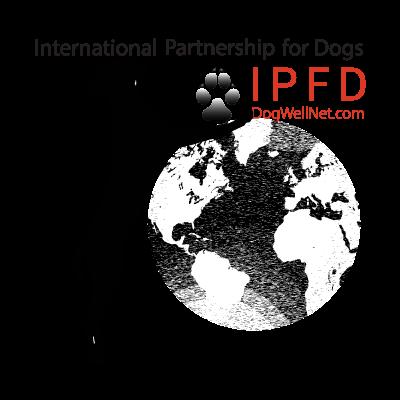 ipfd-wherewework.png