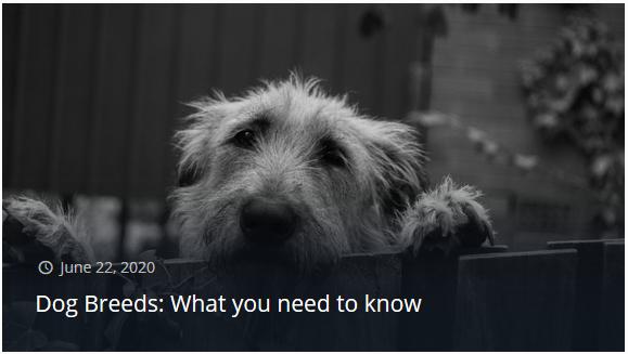 dog breeds.png